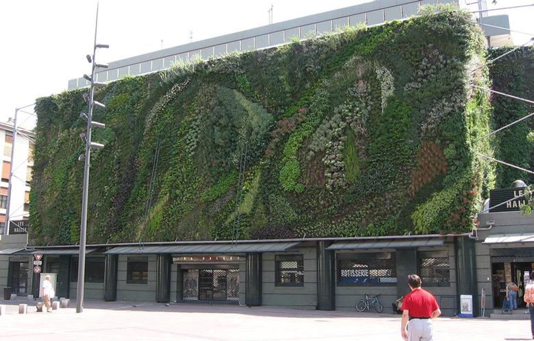 Parede verde em Avignon, na França, de autoria de Patrick Blanc.