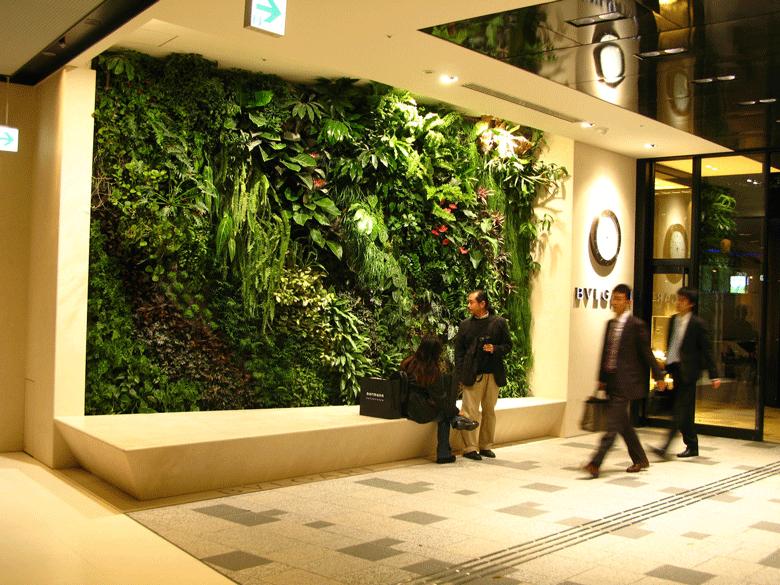 Foto da parede verde no Shopping Center em Tokyo, no Japão. Omote Sando Gyre, de Patrick Blanc.